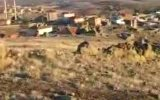 niğde İli koyunlu kasabası - koyunlu kasabasi