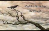 Bobby El Lobo Negro Feat Baby Rasta - Seduceme ( Official Video ) view on izlesene.com tube online.