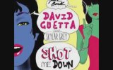 David Guetta ft. Skylar Grey - Shot Me Down (Official Audio)