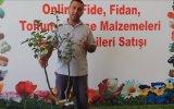 Sertifikalı Aşılı Limon Armut Fidanı Ve Meyve Özellikleri