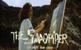The Sandpiper Fragmanı