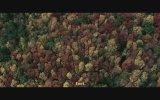 Ölüm Ormanı (2014) Fragman